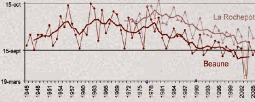 date_vendanges_rechauffement_climatique